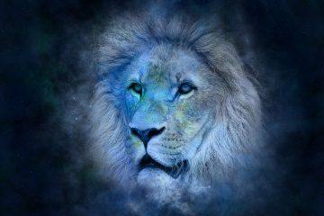 pierre pour Lion